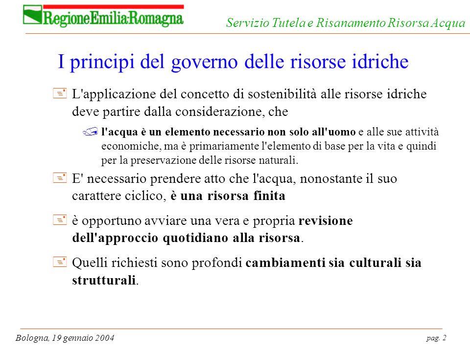 pag. 2 Bologna, 19 gennaio 2004 Servizio Tutela e Risanamento Risorsa Acqua I principi del governo delle risorse idriche +L'applicazione del concetto