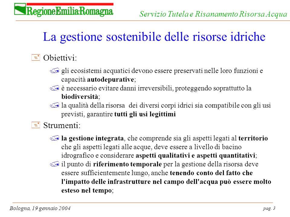 pag. 3 Bologna, 19 gennaio 2004 Servizio Tutela e Risanamento Risorsa Acqua La gestione sostenibile delle risorse idriche +Obiettivi: /gli ecosistemi