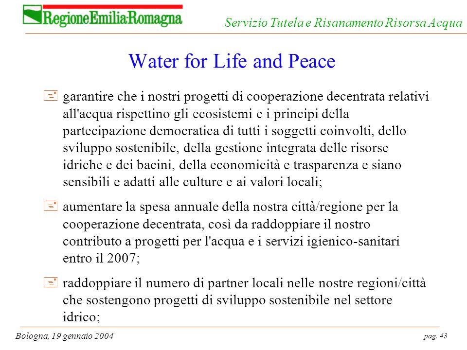 pag. 43 Bologna, 19 gennaio 2004 Servizio Tutela e Risanamento Risorsa Acqua Water for Life and Peace +garantire che i nostri progetti di cooperazione