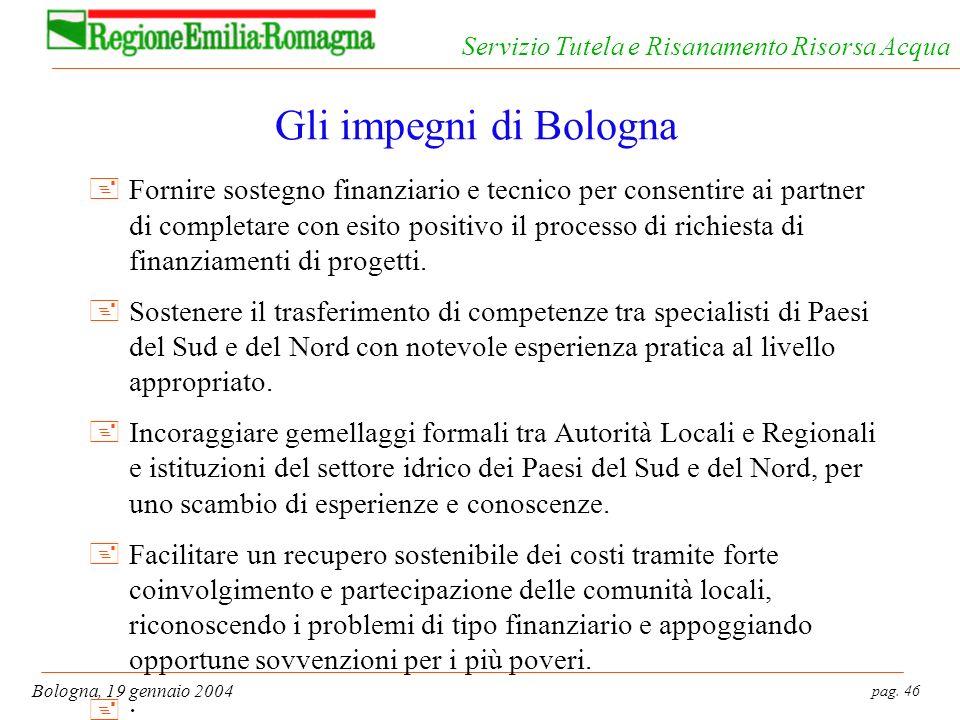 pag. 46 Bologna, 19 gennaio 2004 Servizio Tutela e Risanamento Risorsa Acqua Gli impegni di Bologna +Fornire sostegno finanziario e tecnico per consen