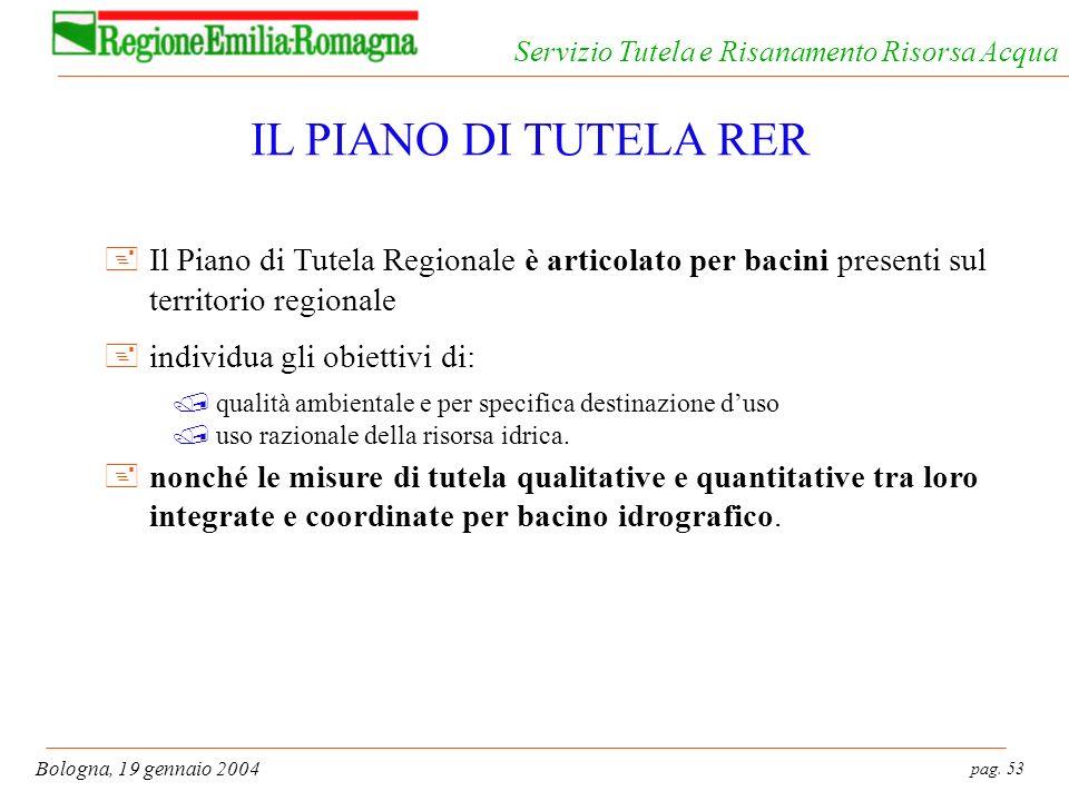 pag. 53 Bologna, 19 gennaio 2004 Servizio Tutela e Risanamento Risorsa Acqua IL PIANO DI TUTELA RER +Il Piano di Tutela Regionale è articolato per bac