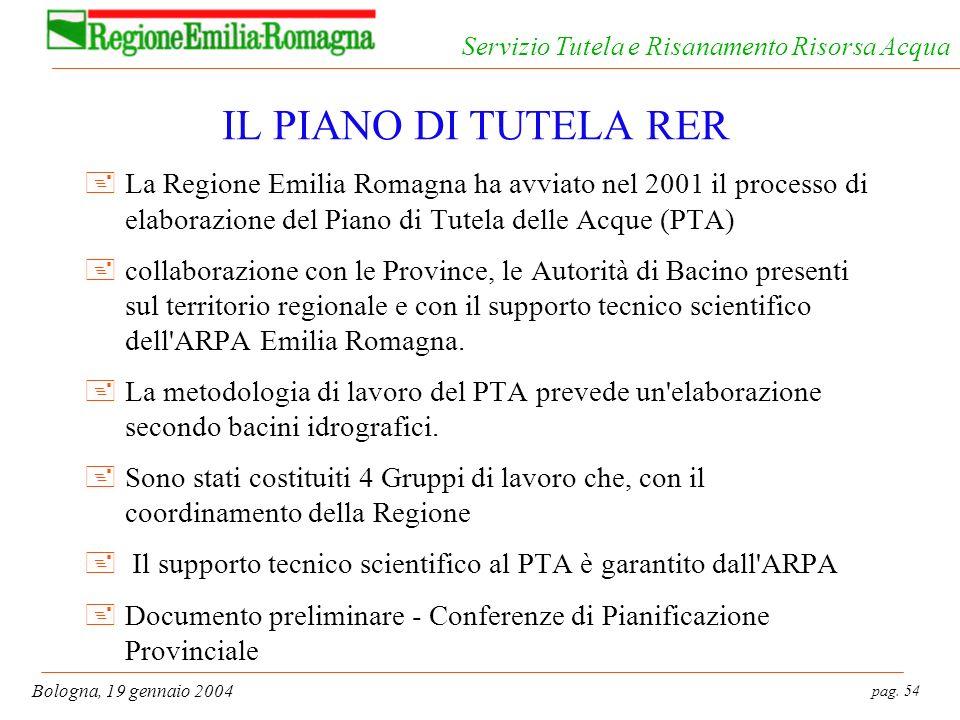 pag. 54 Bologna, 19 gennaio 2004 Servizio Tutela e Risanamento Risorsa Acqua IL PIANO DI TUTELA RER +La Regione Emilia Romagna ha avviato nel 2001 il