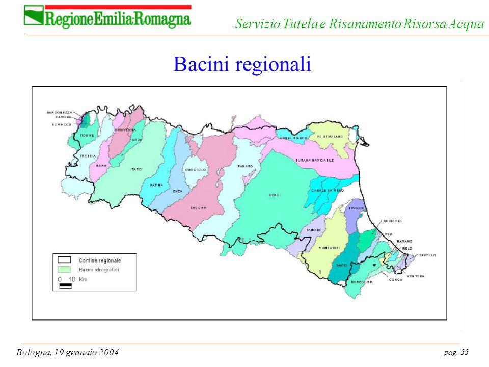 pag. 55 Bologna, 19 gennaio 2004 Servizio Tutela e Risanamento Risorsa Acqua Bacini regionali