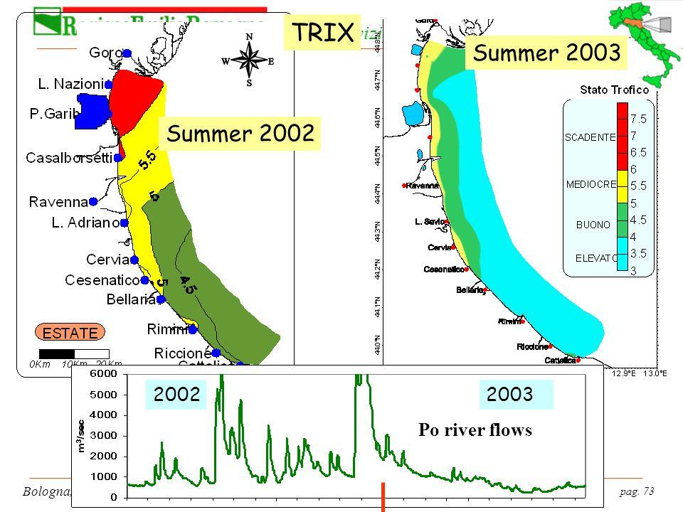 pag. 73 Bologna, 19 gennaio 2004 Servizio Tutela e Risanamento Risorsa Acqua Summer 2002 Summer 2003 20022003 TRIX Po river flows