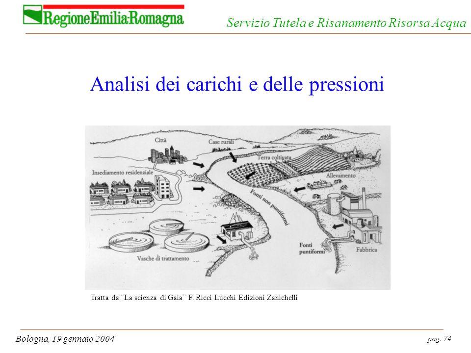 pag. 74 Bologna, 19 gennaio 2004 Servizio Tutela e Risanamento Risorsa Acqua Analisi dei carichi e delle pressioni Tratta da La scienza di Gaia F. Ric