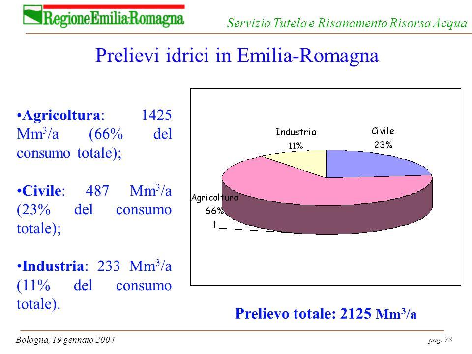 pag. 78 Bologna, 19 gennaio 2004 Servizio Tutela e Risanamento Risorsa Acqua Prelievi idrici in Emilia-Romagna Agricoltura: 1425 Mm 3 /a (66% del cons