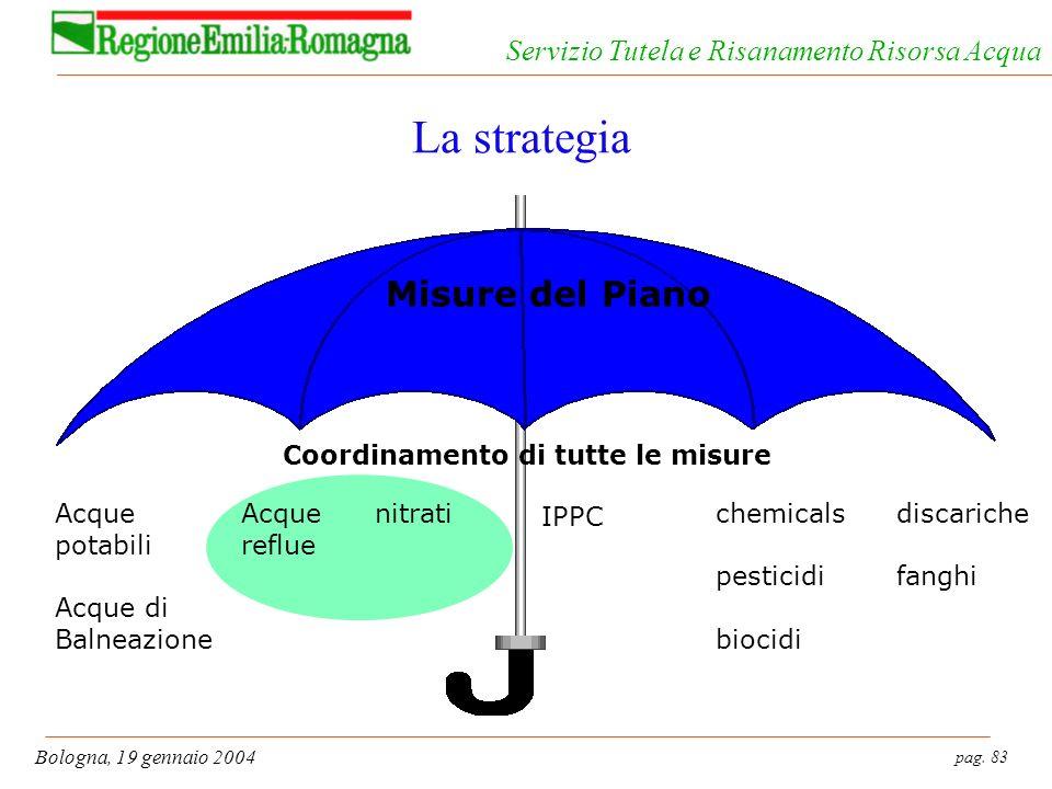pag. 83 Bologna, 19 gennaio 2004 Servizio Tutela e Risanamento Risorsa Acqua La strategia Acque reflue nitrati IPPC chemicals pesticidi biocidi discar