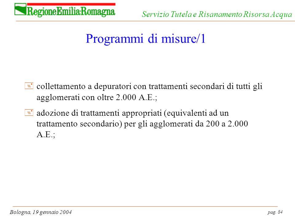 pag. 84 Bologna, 19 gennaio 2004 Servizio Tutela e Risanamento Risorsa Acqua Programmi di misure/1 +collettamento a depuratori con trattamenti seconda