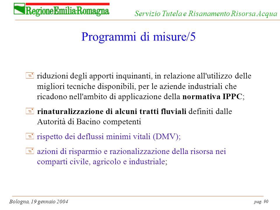 pag. 90 Bologna, 19 gennaio 2004 Servizio Tutela e Risanamento Risorsa Acqua Programmi di misure/5 +riduzioni degli apporti inquinanti, in relazione a