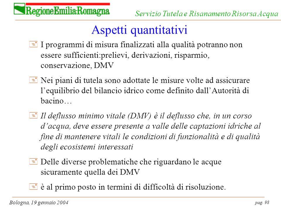 pag. 98 Bologna, 19 gennaio 2004 Servizio Tutela e Risanamento Risorsa Acqua Aspetti quantitativi +I programmi di misura finalizzati alla qualità potr