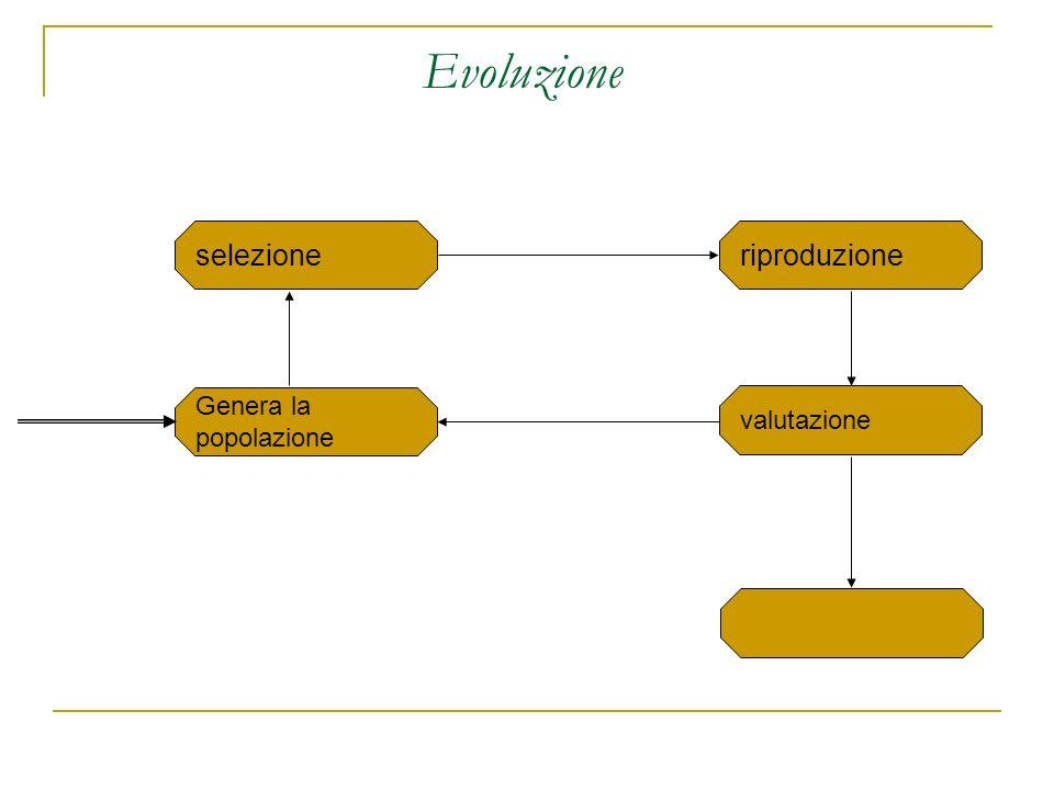 Evoluzione selezione Genera la popolazione valutazione riproduzione