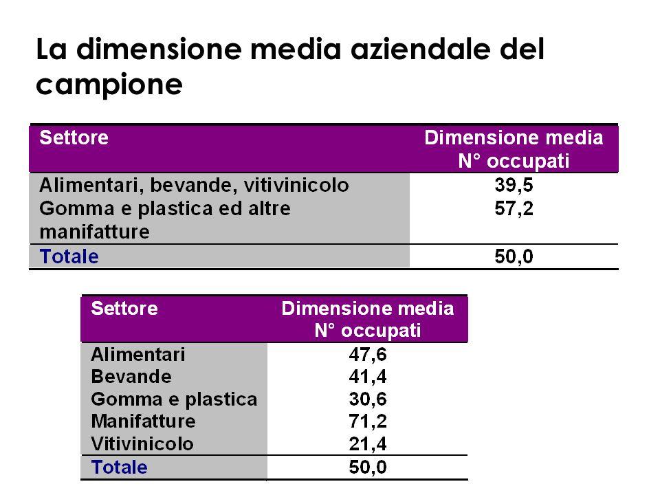 La dimensione media aziendale del campione