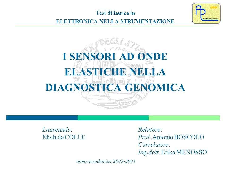 2 Schema della presentazione Introduzione e descrizione del DNA Biosensori basati su DNA (sensore primario) Dispositivi acustici come sensori secondari Caratterizzazione di una QCM e circuito di condizionamento per la stessa