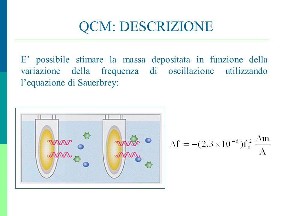 12 QCM: DESCRIZIONE E possibile stimare la massa depositata in funzione della variazione della frequenza di oscillazione utilizzando lequazione di Sau