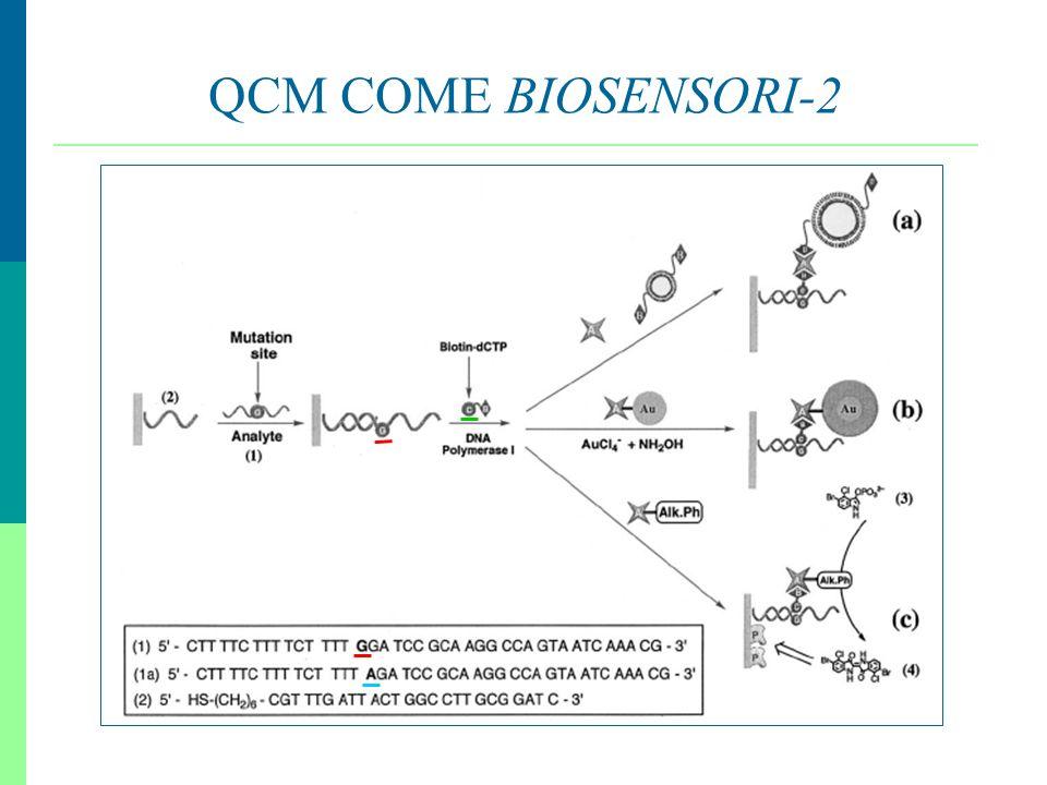 14 QCM COME BIOSENSORI-2