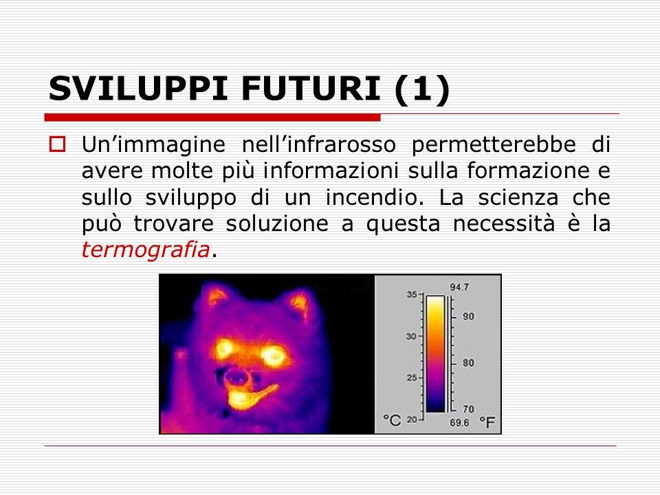 SVILUPPI FUTURI (1) Unimmagine nellinfrarosso permetterebbe di avere molte più informazioni sulla formazione e sullo sviluppo di un incendio. La scien
