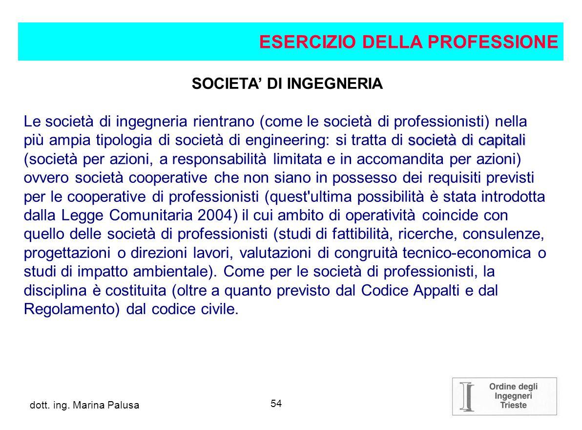 53 dott.ing. Alberto Guglia SOCIETA DI PROFESSIONISTI segue L art.