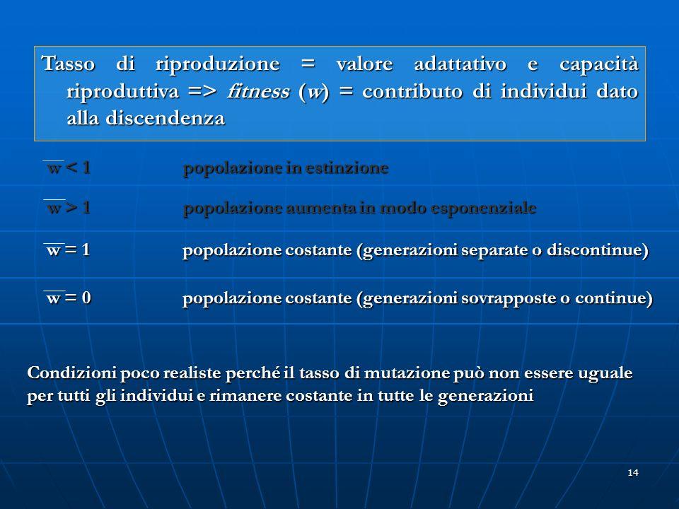 14 Tasso di riproduzione = valore adattativo e capacità riproduttiva => fitness (w) = contributo di individui dato alla discendenza w < 1 popolazione
