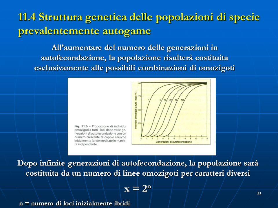 31 11.4 Struttura genetica delle popolazioni di specie prevalentemente autogame Allaumentare del numero delle generazioni in autofecondazione, la popo