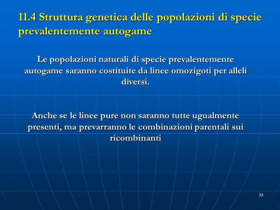 32 11.4 Struttura genetica delle popolazioni di specie prevalentemente autogame Le popolazioni naturali di specie prevalentemente autogame saranno cos