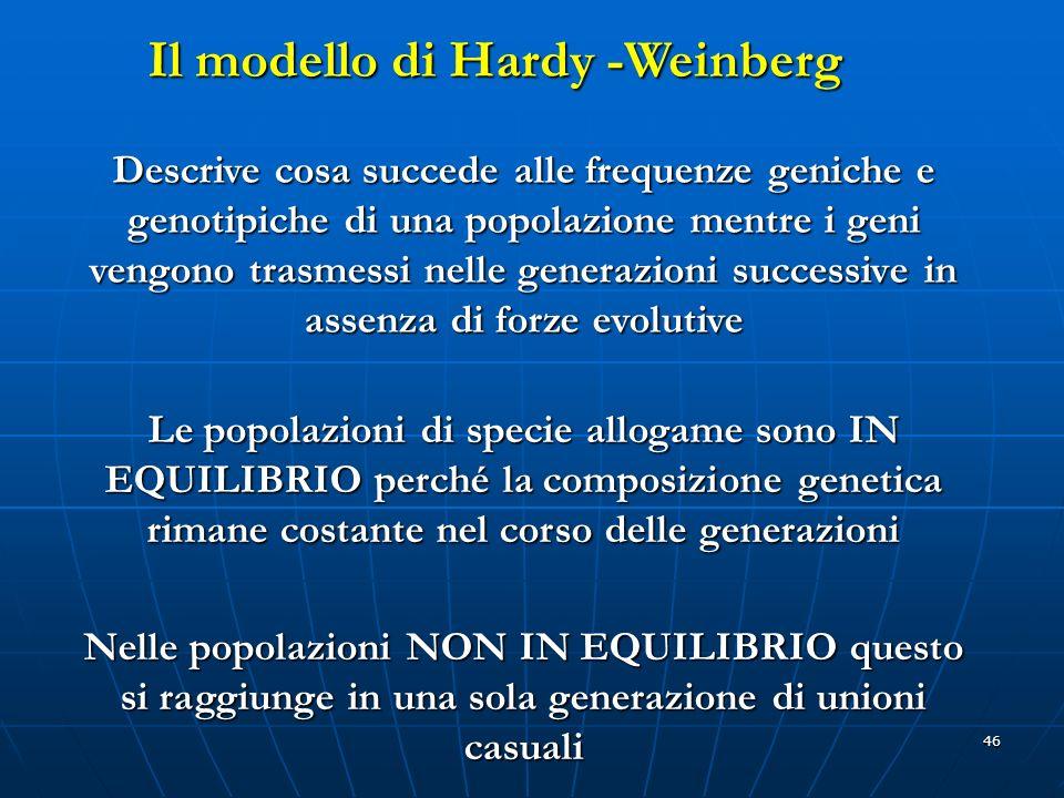46 Descrive cosa succede alle frequenze geniche e genotipiche di una popolazione mentre i geni vengono trasmessi nelle generazioni successive in assen
