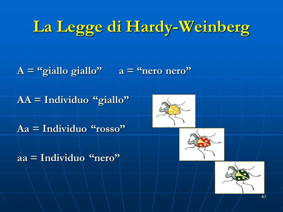 47 La Legge di Hardy-Weinberg A = giallo giallo a = nero nero AA = Individuo giallo Aa = Individuo rosso aa = Individuo nero