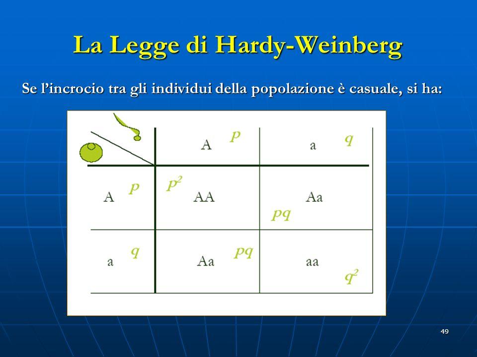 49 La Legge di Hardy-Weinberg Se lincrocio tra gli individui della popolazione è casuale, si ha: