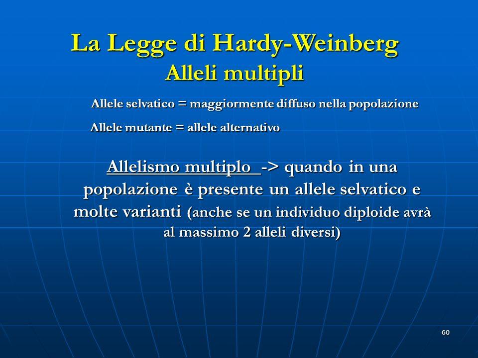 60 La Legge di Hardy-Weinberg Alleli multipli Allele selvatico = maggiormente diffuso nella popolazione Allelismo multiplo -> quando in una popolazion