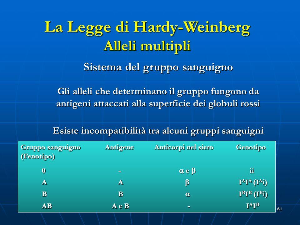 61 La Legge di Hardy-Weinberg Alleli multipli Sistema del gruppo sanguigno Gli alleli che determinano il gruppo fungono da antigeni attaccati alla sup
