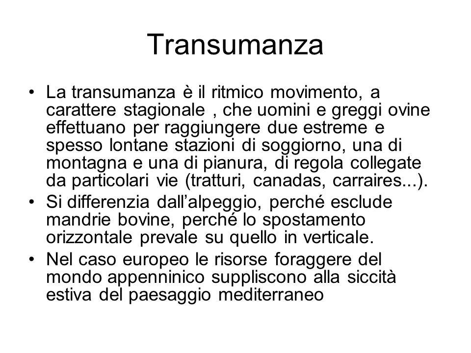 Transumanza La transumanza è il ritmico movimento, a carattere stagionale, che uomini e greggi ovine effettuano per raggiungere due estreme e spesso l
