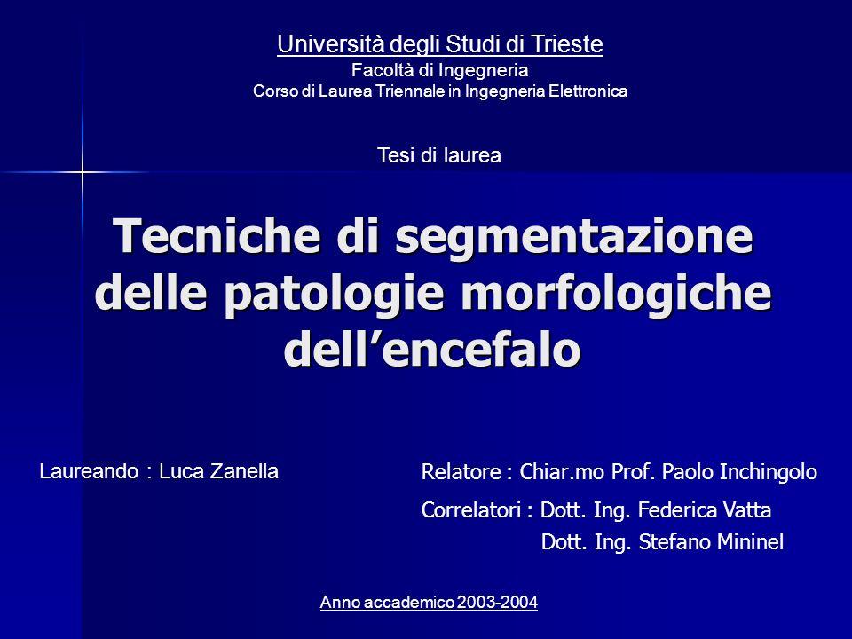 Tecniche di segmentazione delle patologie morfologiche dellencefalo Relatore : Chiar.mo Prof. Paolo Inchingolo Laureando : Luca Zanella Tesi di laurea