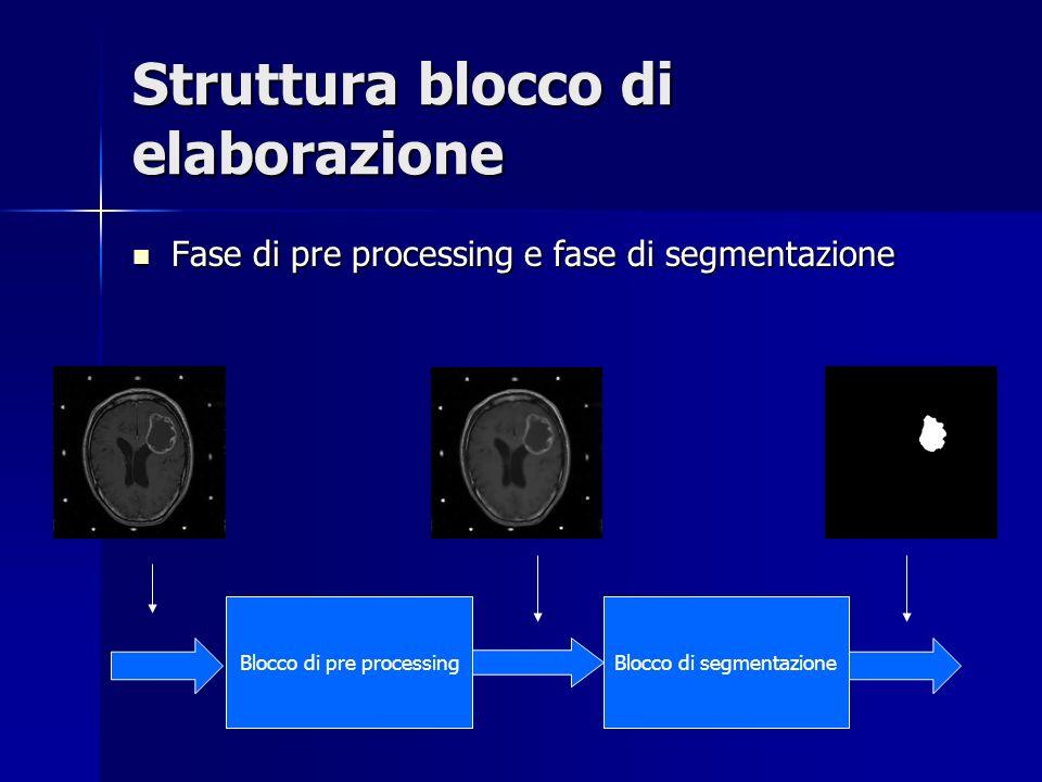 Struttura blocco di elaborazione Fase di pre processing e fase di segmentazione Fase di pre processing e fase di segmentazione Blocco di pre processin