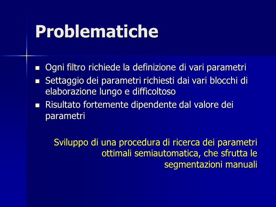 Problematiche Ogni filtro richiede la definizione di vari parametri Ogni filtro richiede la definizione di vari parametri Settaggio dei parametri rich