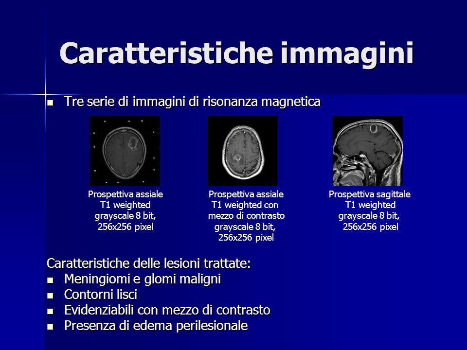 Caratteristiche immagini Tre serie di immagini di risonanza magnetica Tre serie di immagini di risonanza magnetica Caratteristiche delle lesioni tratt