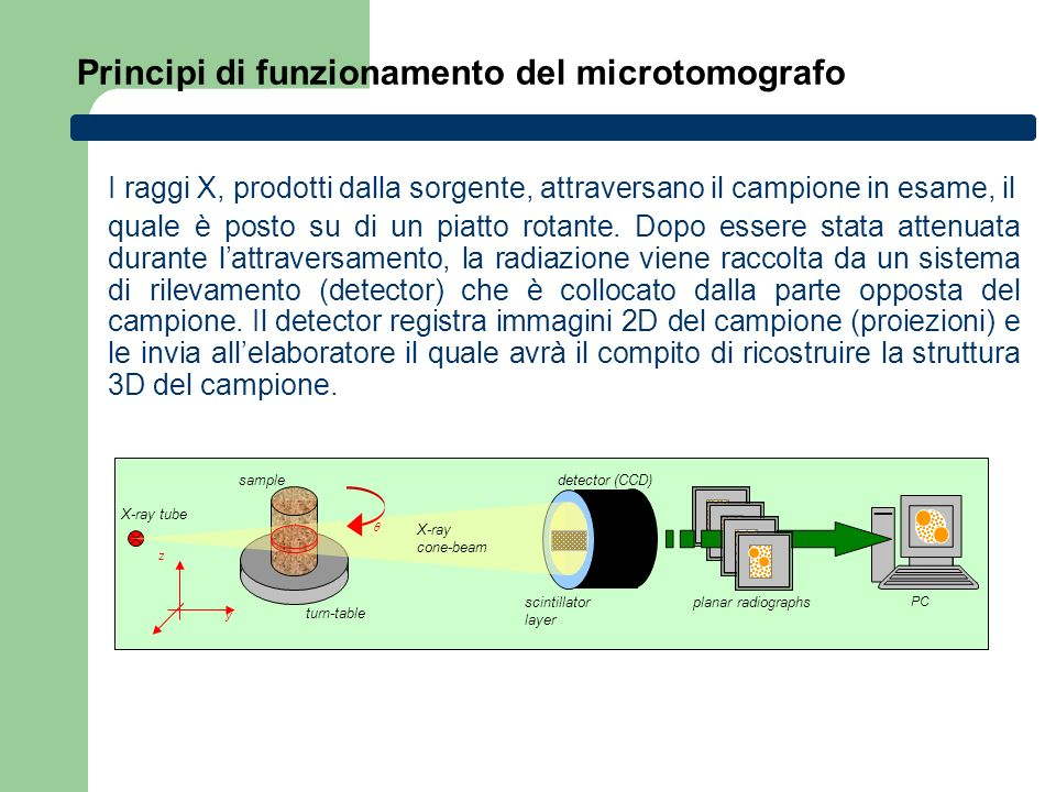 Principi di funzionamento del microtomografo y z turn-table X-ray tube sample scintillator layer detector (CCD) planar radiographs PC X-ray cone-beam