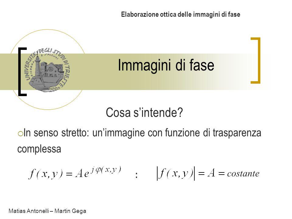Immagini di fase Elaborazione ottica delle immagini di fase Cosa sintende? In senso stretto: unimmagine con funzione di trasparenza complessa Matias A