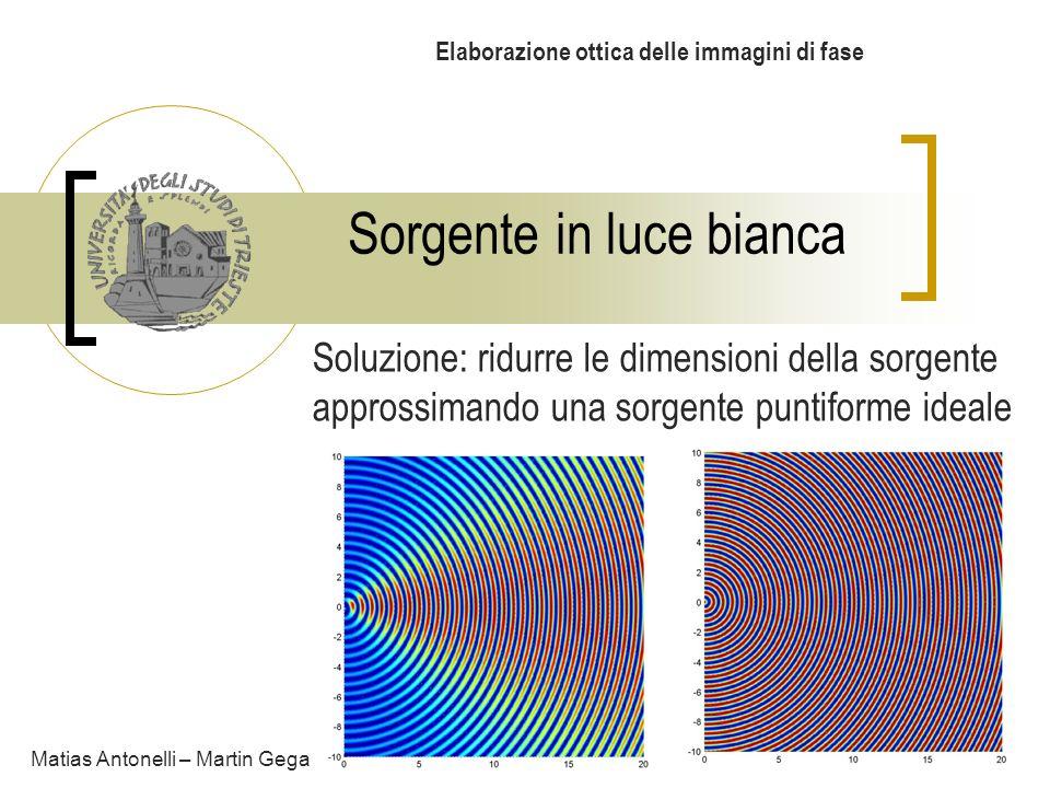 Sorgente in luce bianca Elaborazione ottica delle immagini di fase Matias Antonelli – Martin Gega Soluzione: ridurre le dimensioni della sorgente appr