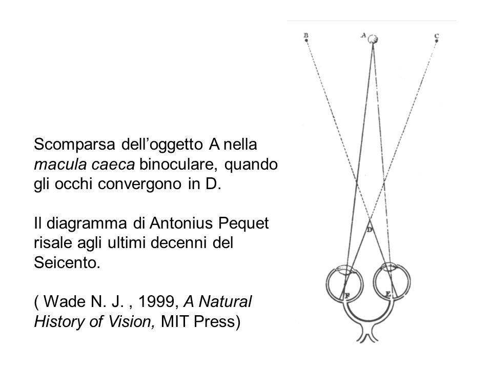 Scomparsa delloggetto A nella macula caeca binoculare, quando gli occhi convergono in D. Il diagramma di Antonius Pequet risale agli ultimi decenni de