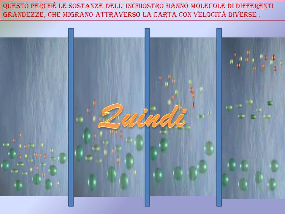 Questo perché le sostanze dell inchiostro hanno molecole di differenti grandezze, che migrano attraverso la carta con velocità diverse.