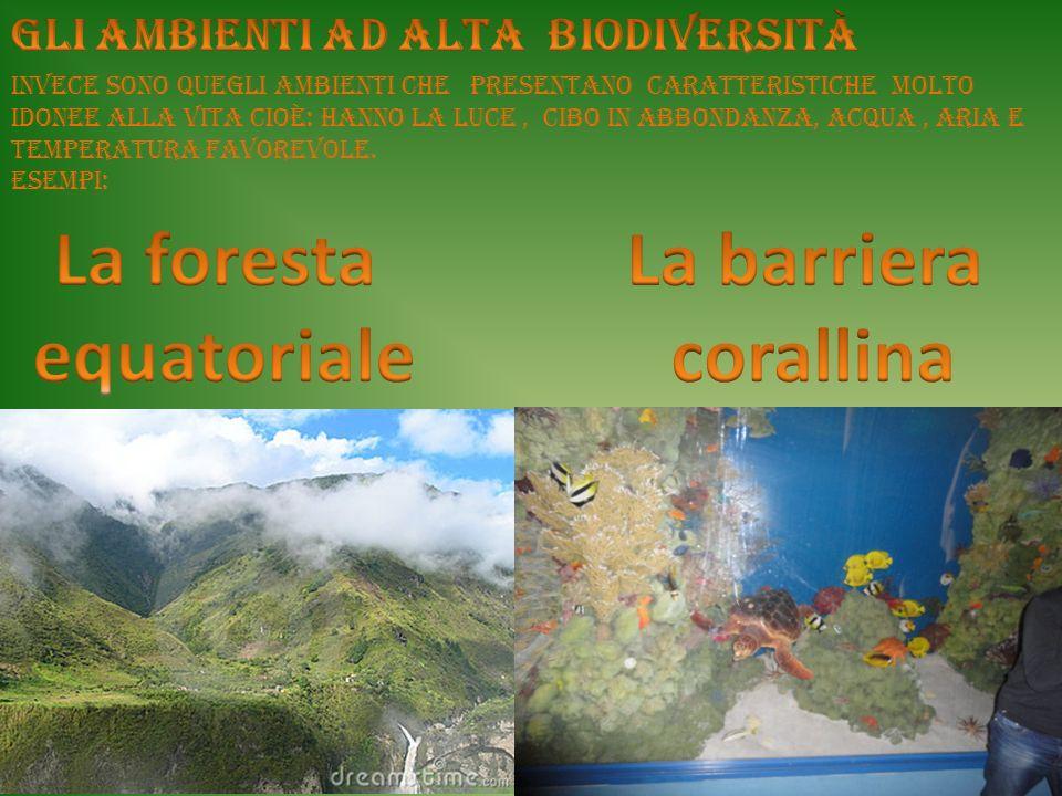 Altri ambienti a bassa biodiversità sono le zone polari con temperature molto rigide.