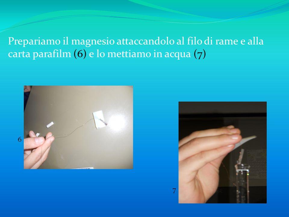 Prepariamo il magnesio attaccandolo al filo di rame e alla carta parafilm (6) e lo mettiamo in acqua (7) 6 7