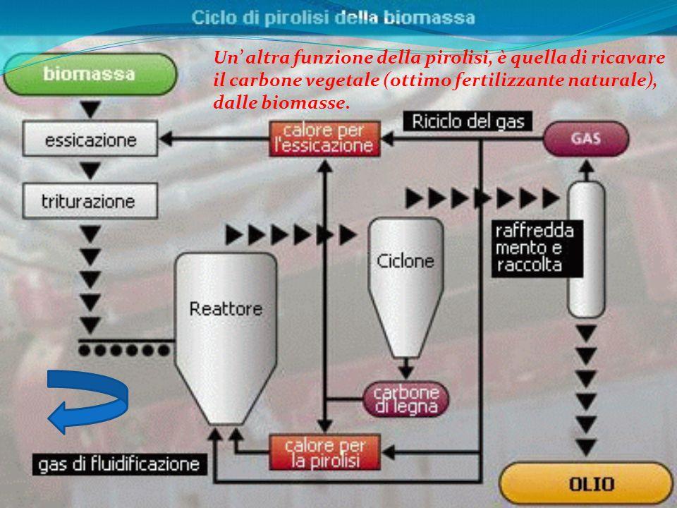 Un altra funzione della pirolisi, è quella di ricavare il carbone vegetale (ottimo fertilizzante naturale), dalle biomasse.