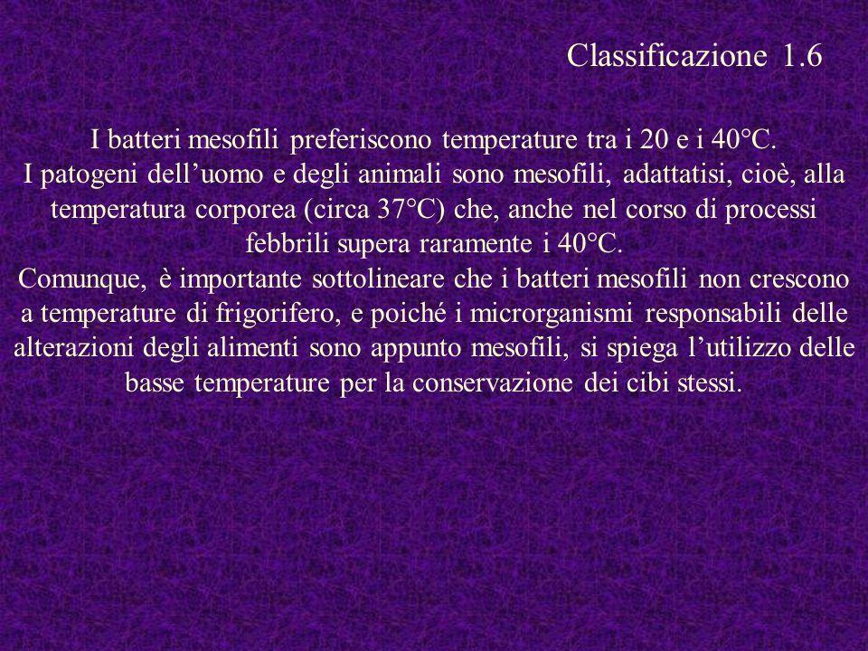 I batteri mesofili preferiscono temperature tra i 20 e i 40°C. I patogeni delluomo e degli animali sono mesofili, adattatisi, cioè, alla temperatura c