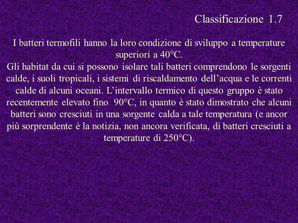 I batteri termofili hanno la loro condizione di sviluppo a temperature superiori a 40°C. Gli habitat da cui si possono isolare tali batteri comprendon