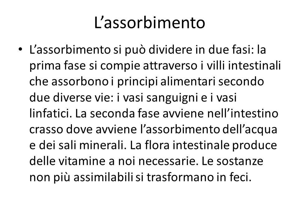 Lassorbimento Lassorbimento si può dividere in due fasi: la prima fase si compie attraverso i villi intestinali che assorbono i principi alimentari secondo due diverse vie: i vasi sanguigni e i vasi linfatici.
