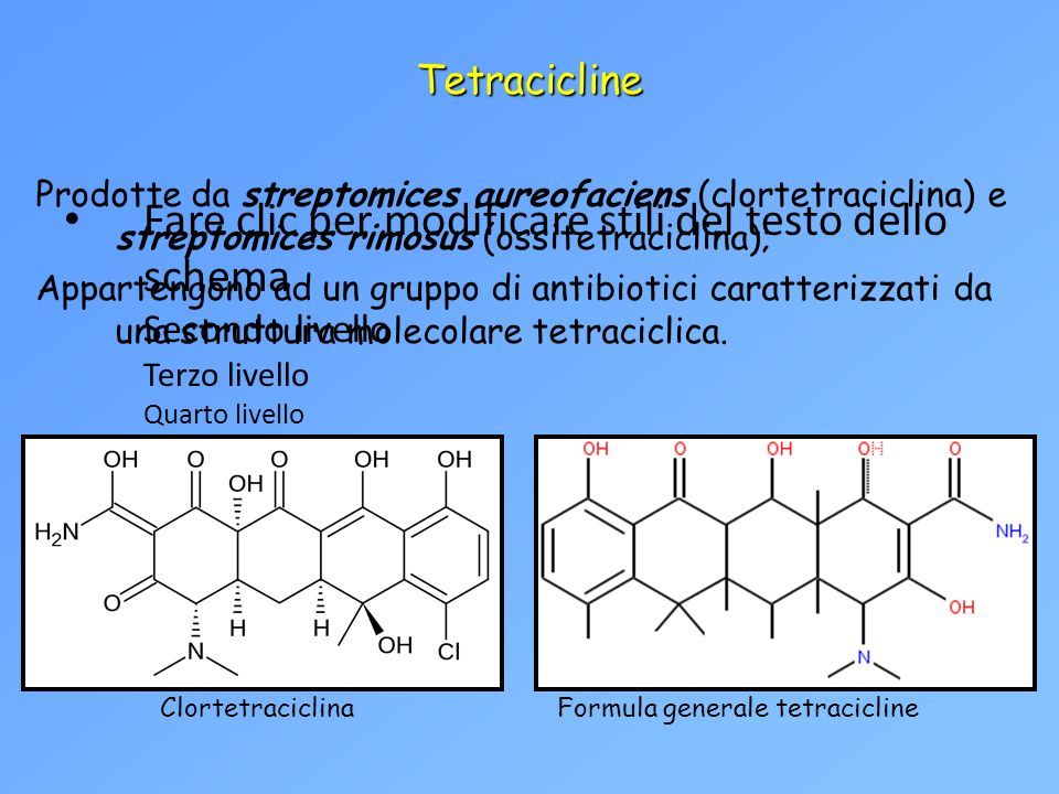 Fare clic per modificare stili del testo dello schema Secondo livello Terzo livello Quarto livello Quinto livello Tetracicline Prodotte da streptomice
