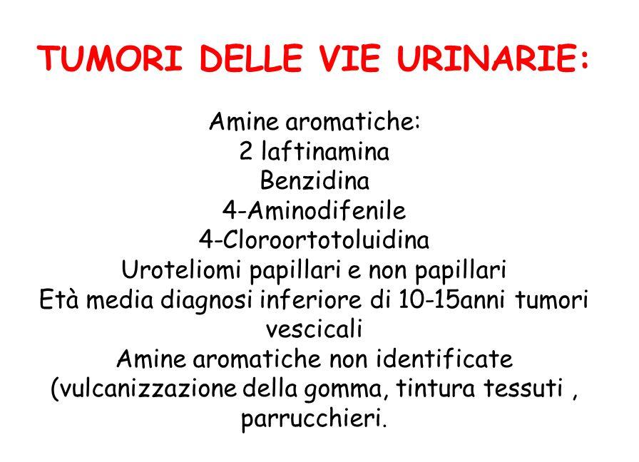 TUMORI DELLE VIE URINARIE: Amine aromatiche: 2 laftinamina Benzidina 4-Aminodifenile 4-Cloroortotoluidina Uroteliomi papillari e non papillari Età med