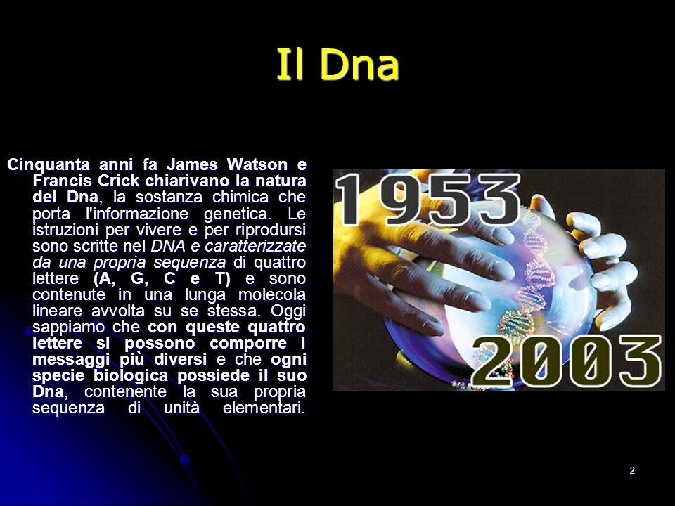 2 Il Dna Cinquanta anni fa James Watson e Francis Crick chiarivano la natura del Dna, la sostanza chimica che porta l'informazione genetica. Le istruz