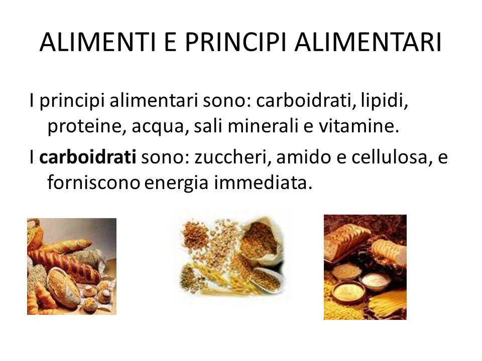 ALIMENTI E PRINCIPI ALIMENTARI I principi alimentari sono: carboidrati, lipidi, proteine, acqua, sali minerali e vitamine. I carboidrati sono: zuccher