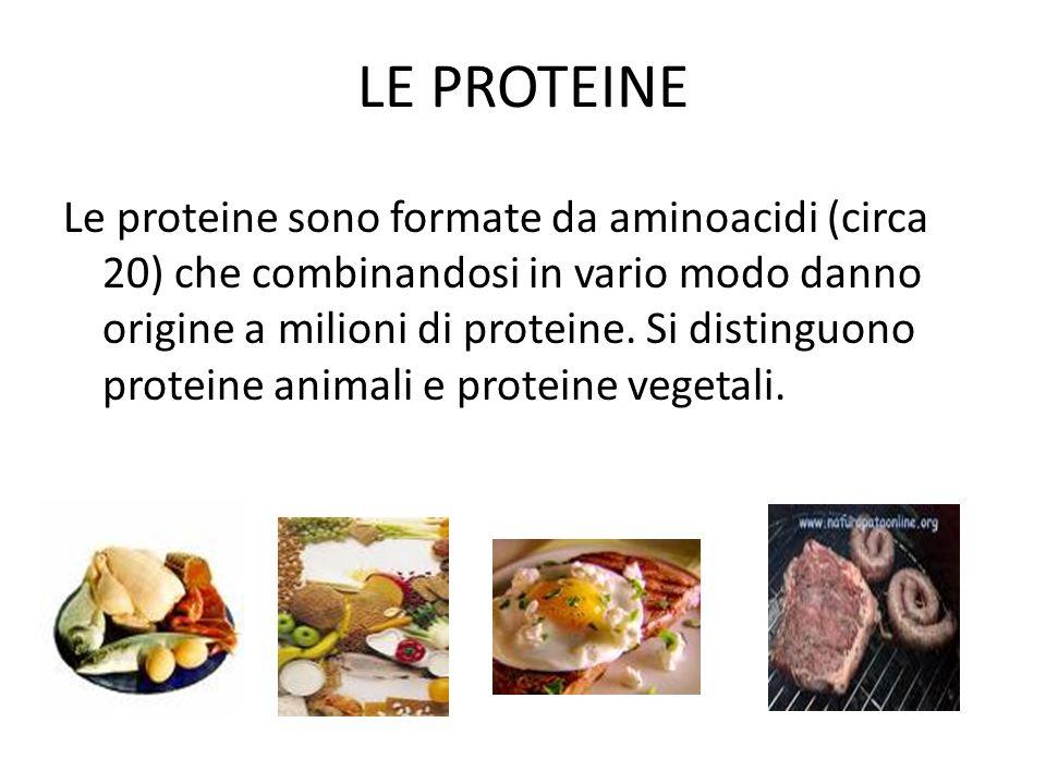 LE PROTEINE Le proteine sono formate da aminoacidi (circa 20) che combinandosi in vario modo danno origine a milioni di proteine. Si distinguono prote